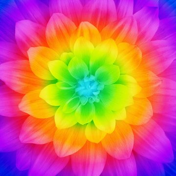 Prism Large Flower 43in x 43in